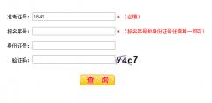 河南省2020年高考成绩查询入口ht